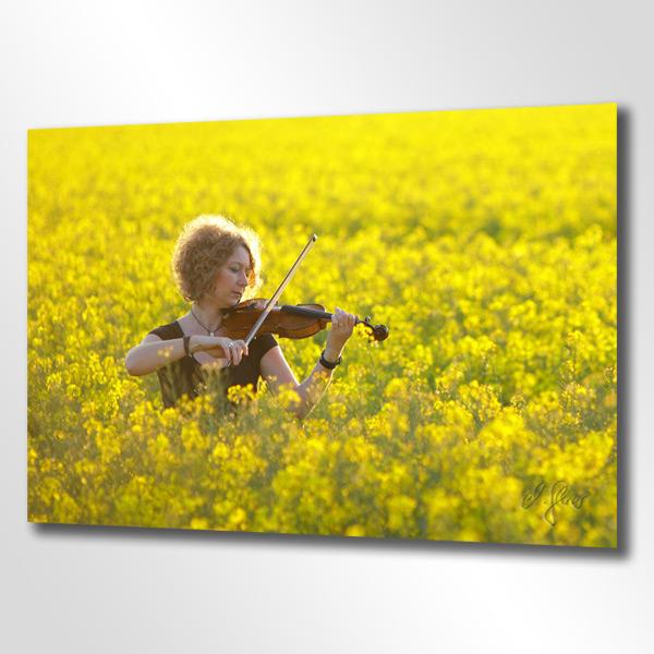 In einem gelben Meer aus Raps bringt die Musikerin ihre Geige zum Wohlklang. Fotografie von Michael Glaser in Krefeld.